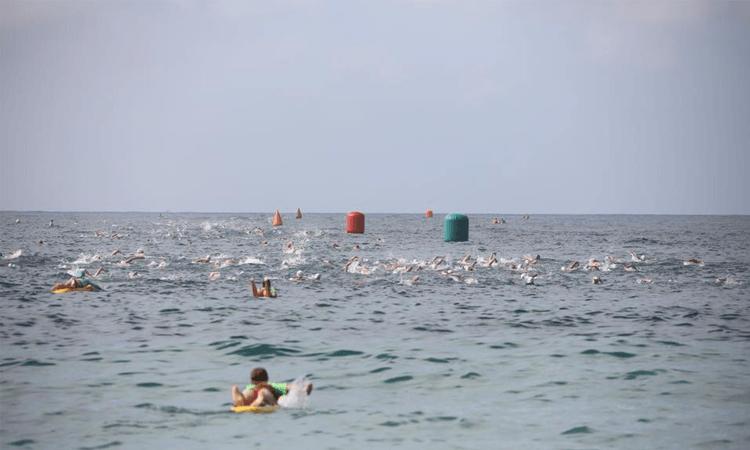 Coogee Island Swim Cold Water Challenge My Next Challenge