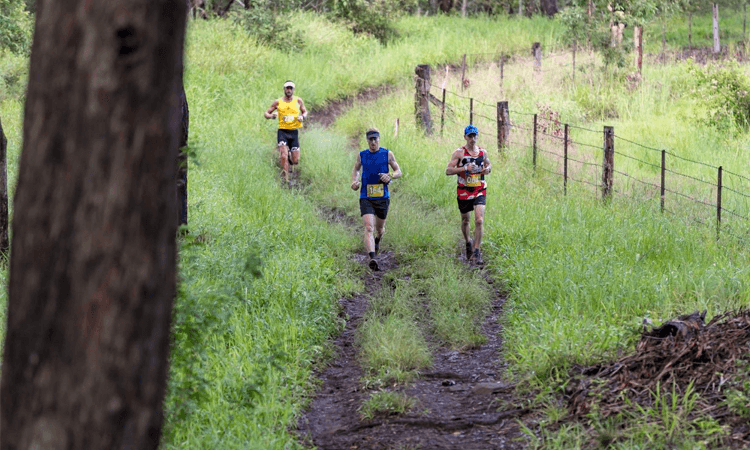 Up the Buff Trail Run Queensland 2019