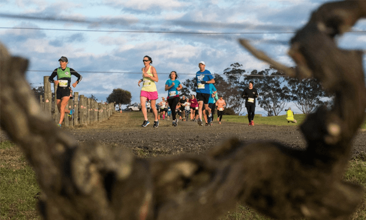 Winery Running Festival Hunter Valley NSW 2019